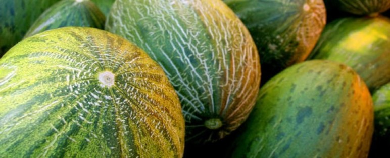Heat + Summer = Melon
